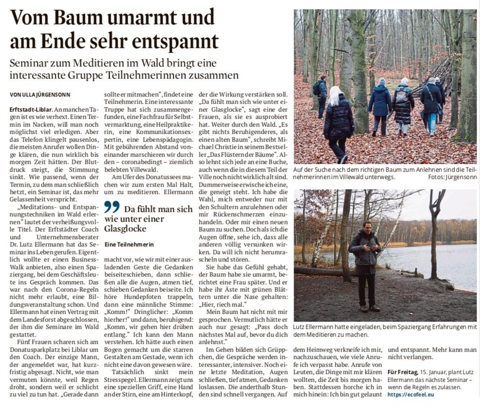 Zeitungsartikel zum Thema Meditation im Wald